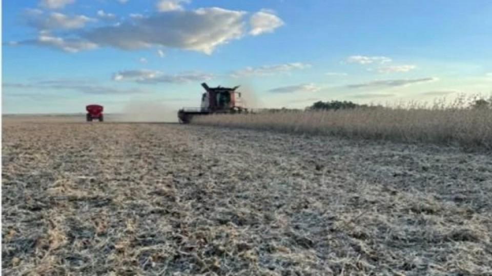 Agricultura: Precios, clima y perspectivas de los granos, puntos en agenda del empresario agrícola —  Agricultura — Dinámica Rural | El Espectador 810
