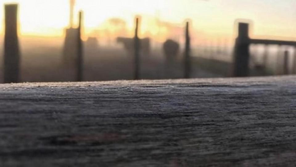 J. L. Pérez: ''Asistimos a un período de heladas tempranas'' —  Clima — Dinámica Rural | El Espectador 810