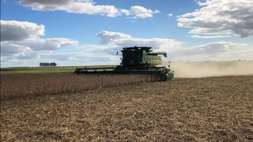 La soja cierra la campaña con un promedio de 2.000 kgs/há —  Agricultura — Dinámica Rural | El Espectador 810