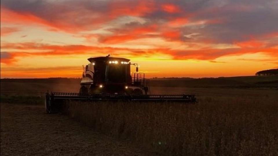 L. Simean: ''En Paysandú finalmente la soja marcó un promedio de 1800 kilos/há'' —  Agricultura — Dinámica Rural | El Espectador 810