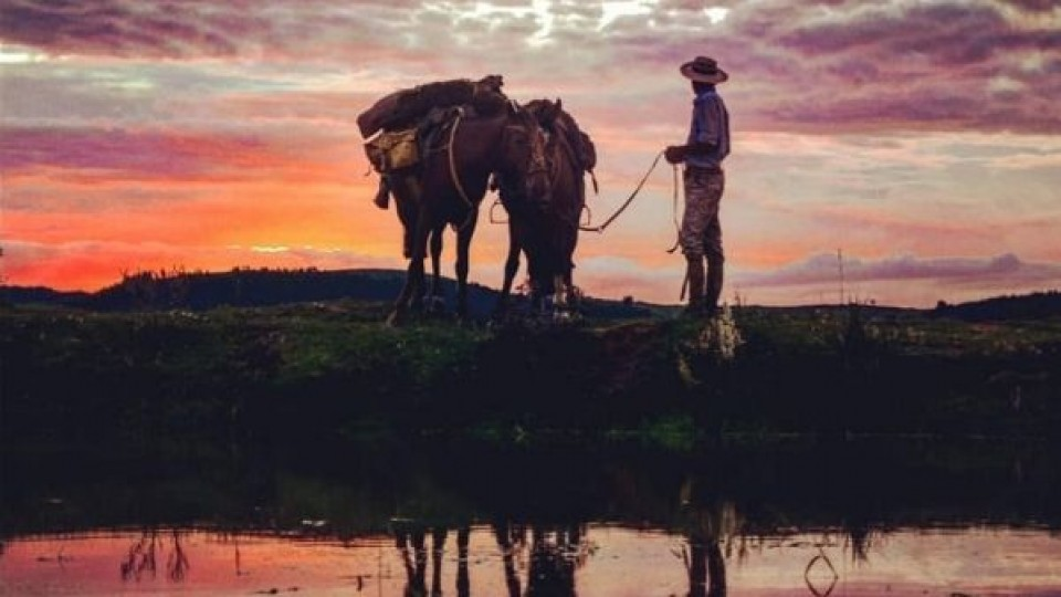 Entre Australia, Uruguay y la pandemia —  Innovación — Dinámica Rural   El Espectador 810