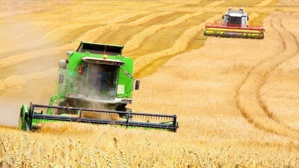 P. Perdomo: ''Queremos seguir profundizando en sustentabilidad y sostenibilidad de la producción'' —  gremiales — Dinámica Rural | El Espectador 810