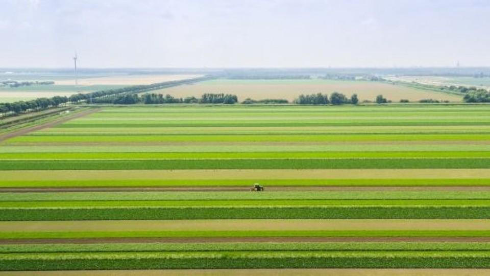 USDA: La soja ingresa en un mercado climático que definirá el precio a futuro —  Comercio Exterior — Dinámica Rural   El Espectador 810