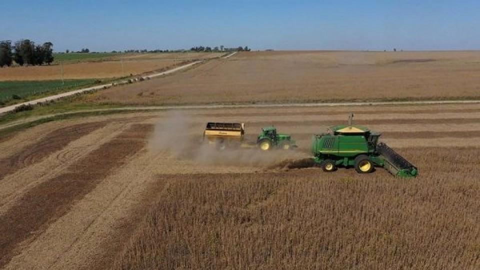 El clima le da volatilidad al mercado sojero —  Comercio Exterior — Dinámica Rural | El Espectador 810