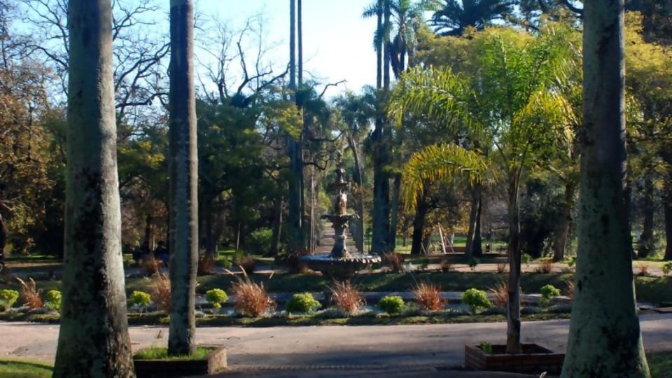 Jardín Botánico de Montevideo, algo más que un paseo al aire libre —  Qué tiene la tarde — Más Temprano Que Tarde   El Espectador 810