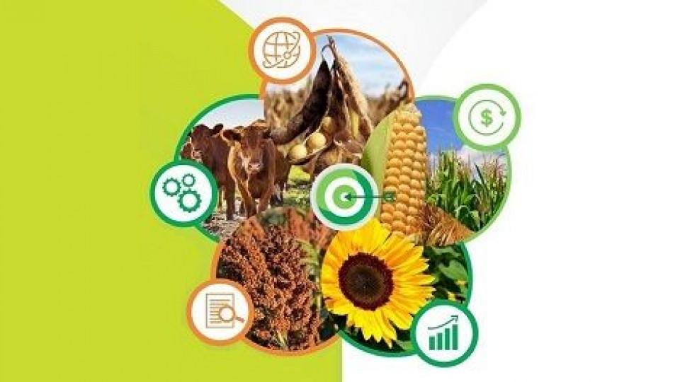 E. Restaino: ''Informarse y asesorarse para tomar mejores decisiones'' —  Investigación — Dinámica Rural   El Espectador 810