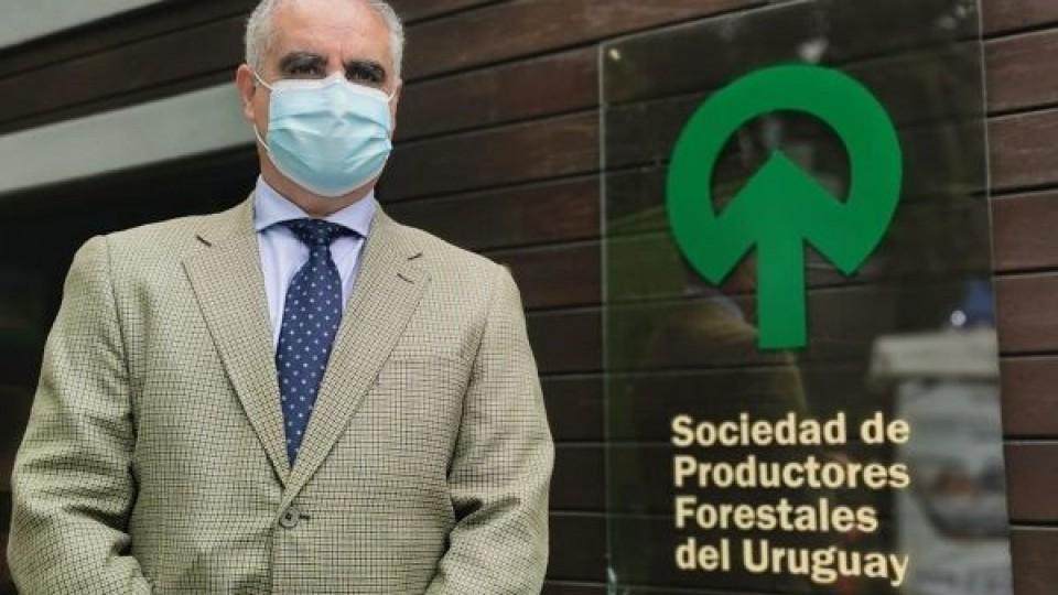 N. Ledesma: ''La actividad forestal es complementaria'' —  Inversión — Dinámica Rural   El Espectador 810