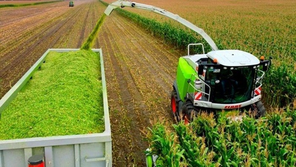 Prolesa tuvo un aumento exponencial en la demanda por materiales para ensilaje —  Lechería — Dinámica Rural | El Espectador 810