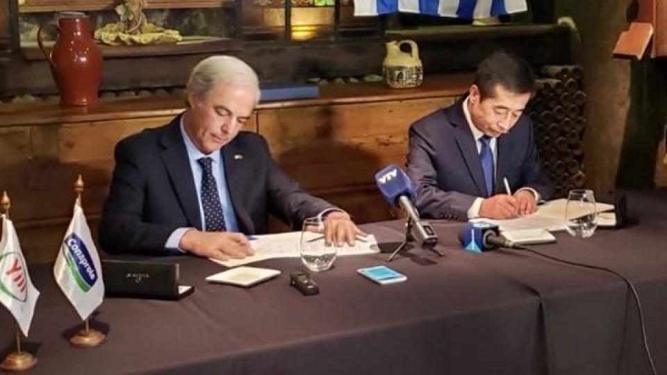 Conaprole y la china Yili acordaron comercio por 4.000 toneladas de leche en polvo —  Lechería — Dinámica Rural | El Espectador 810