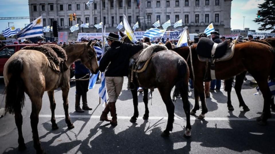 El monolito de Un Solo Uruguay y cómo fue esta legislatura de Unidad Popular —  NTN Concentrado — No Toquen Nada | El Espectador 810