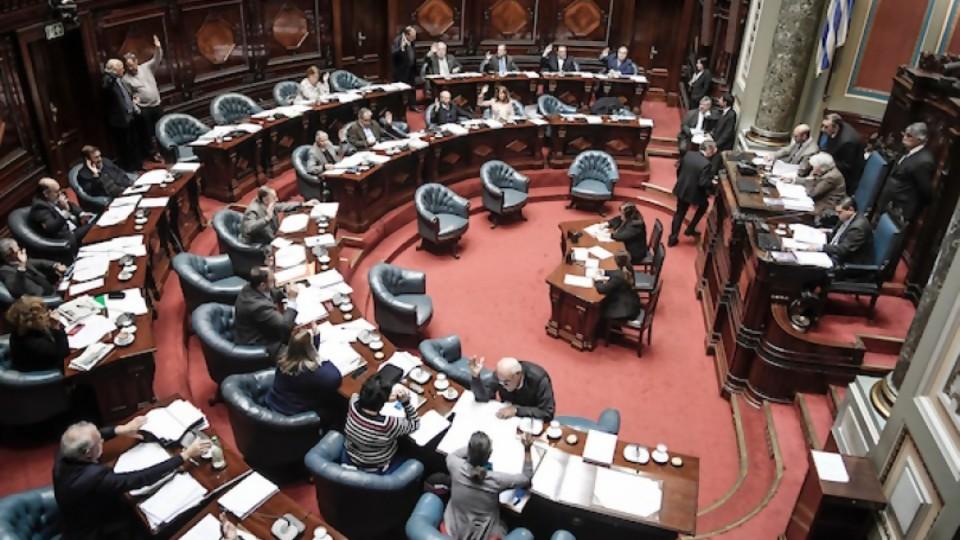 Denuncias y pases en comisión —  Sergio Pena — Otro Elefante | El Espectador 810