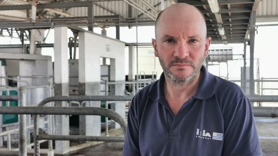 Robotización, bienestar y más productividad marcan el camino de la lechería —  Lechería — Dinámica Rural   El Espectador 810
