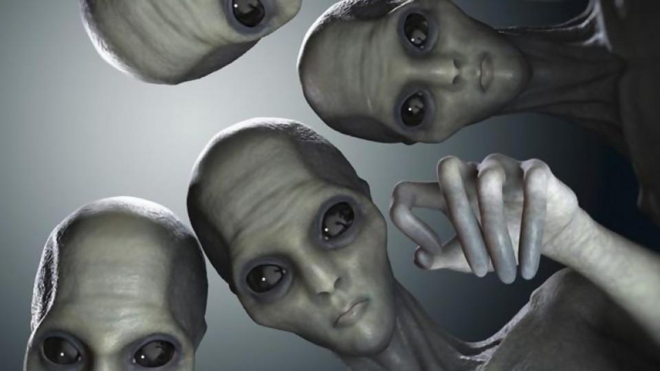 ¿Cómo saber si tengo ADN extraterrestre?  —  Pablo Silvera  — Otro Elefante | El Espectador 810