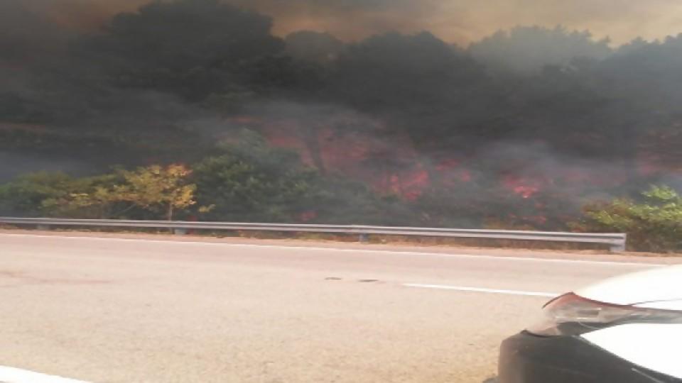 """Aníbal Pereyra sobre incendios: """"El viento es determinante y esperemos que hoy tengamos mejores noticias"""" —  Entrevistas — Al Día 810   El Espectador 810"""