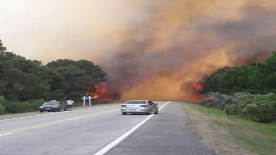 Incendios en La Esmeralda —  Puesta a punto — Más Temprano Que Tarde | El Espectador 810