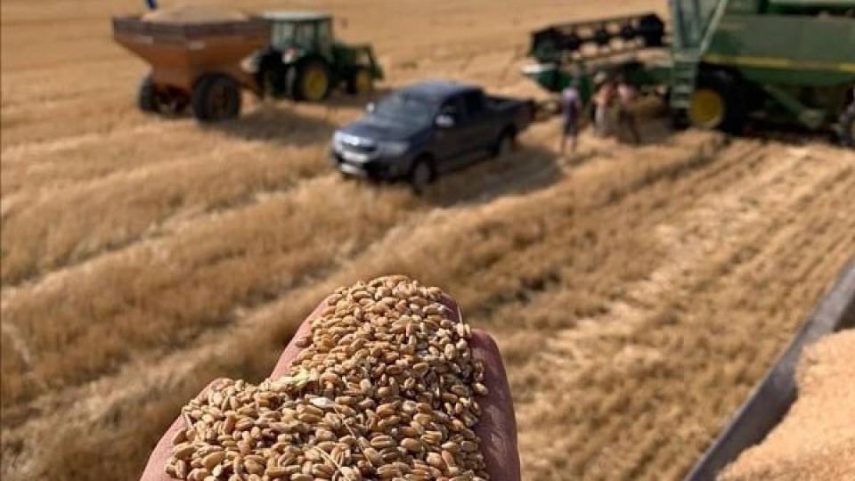 CUSA 'corrigió a la baja hasta un 3% los precios sugeridos' —  Agricultura — Dinámica Rural | El Espectador 810