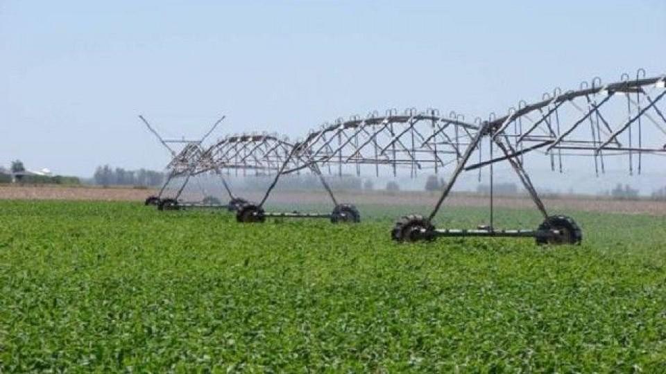Riego: impacto en los sistemas de producción ganadera —  Ganadería — Dinámica Rural | El Espectador 810