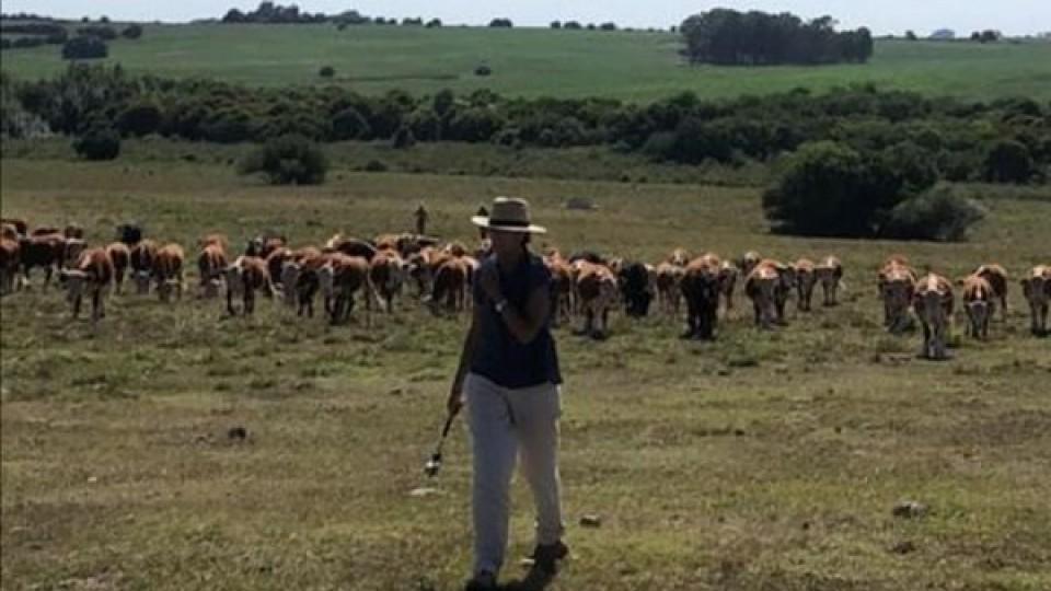 Pastoreo Racional: Cosas a tener en cuenta para una correcta instalación —  Ganadería — Dinámica Rural | El Espectador 810