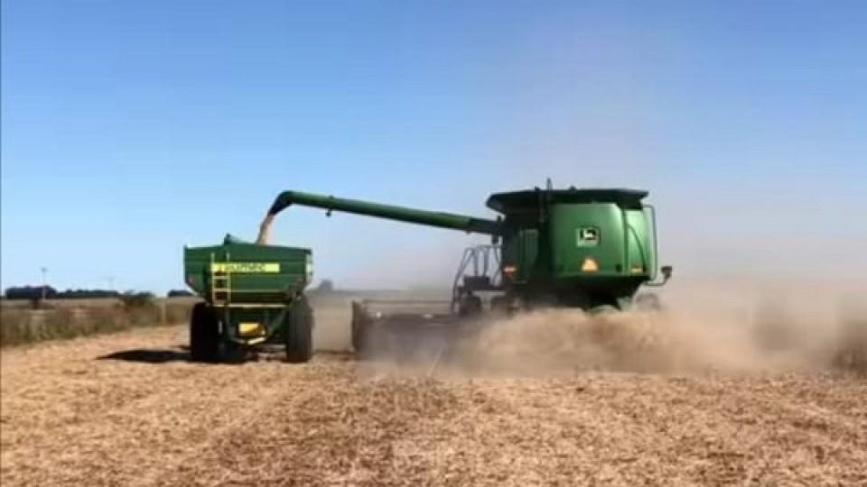 Agricultura: Transcurre La trilla de soja, y asoma la siembra de invierno —  Agricultura — Dinámica Rural   El Espectador 810