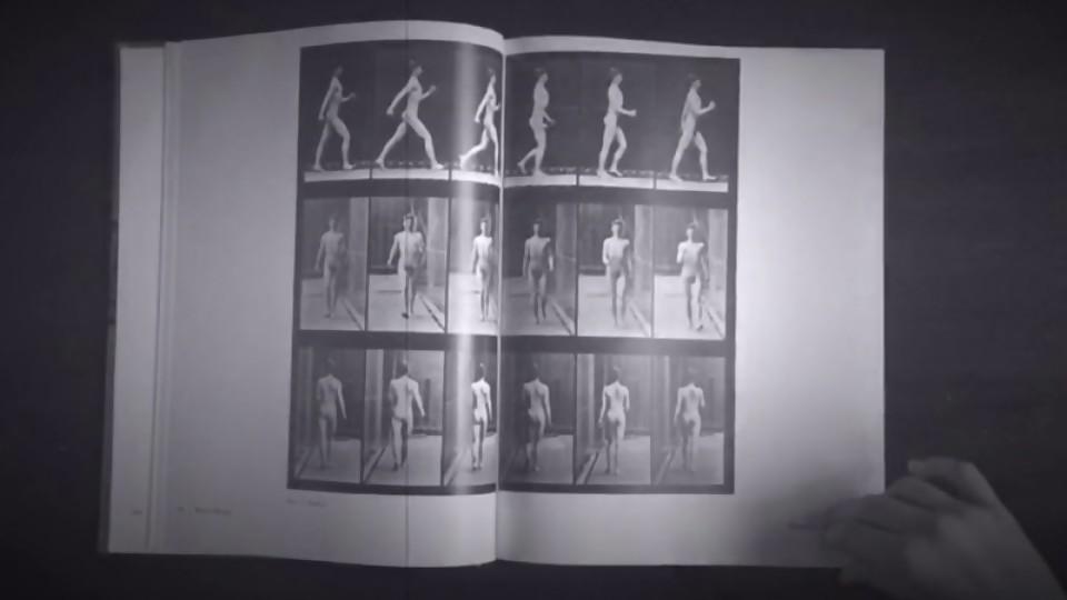 Eadweard Muybridge: el fotógrafo precursor del cine —  Leo Barizzoni — No Toquen Nada | El Espectador 810