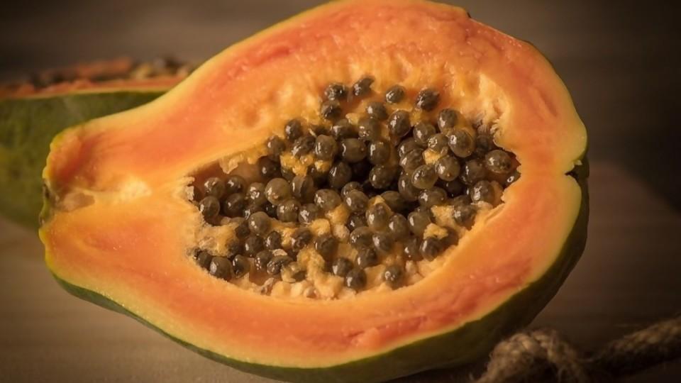 Covillero: países exitosos que no les creen y la papaya que dio positivo —  Columna de Darwin — No Toquen Nada | El Espectador 810