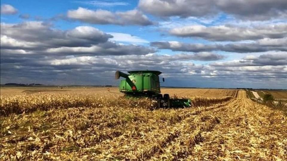 Soja: 'Vemos un negocio que a pesar de las dificultades es atractivo' —  Agricultura — Dinámica Rural | El Espectador 810