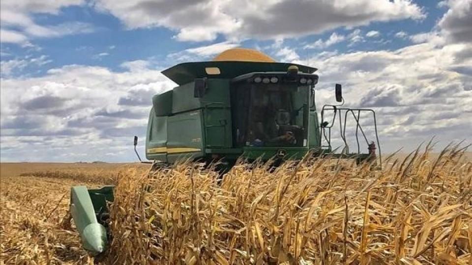 A full: Atrás quedó la cosecha de verano, pero la siembra de invierno avanza a buen ritmo —  Agricultura — Dinámica Rural   El Espectador 810