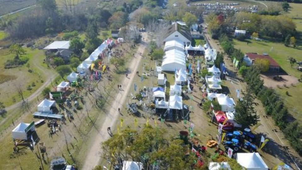Asesoramiento, gestión y planes de apoyo serán la línea del nuevo presidente de Prolesa  —  Lechería — Dinámica Rural   El Espectador 810