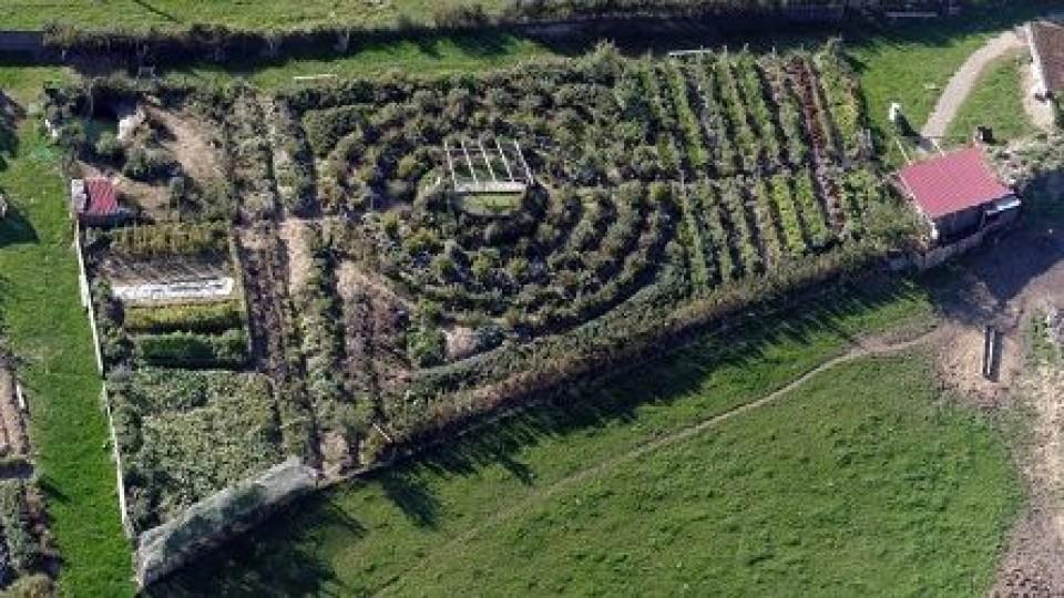 Permacultura  —  Agricultura — Dinámica Rural | El Espectador 810