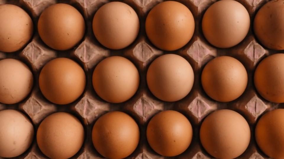 Los huevos: composición, conservación, manipulación —  Leticia Cicero — No Toquen Nada | El Espectador 810