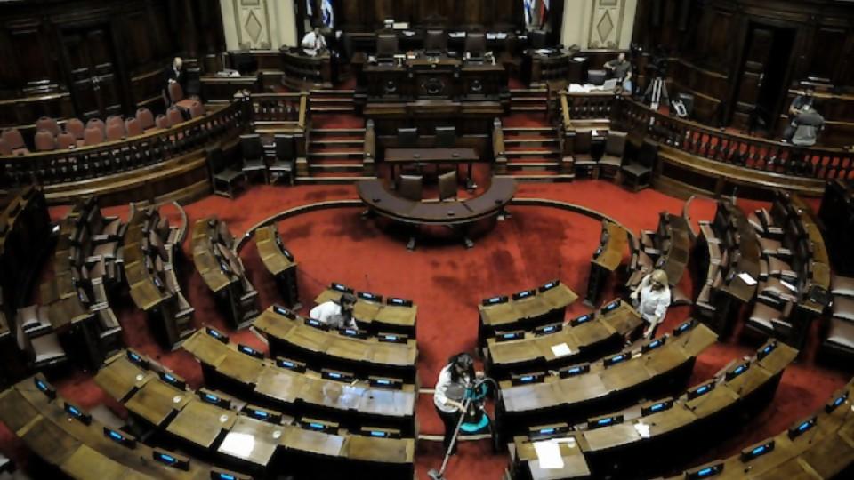 Propiedades y conservación de los huevos y el debate sin argumentos del Parlamento —  NTN Concentrado — No Toquen Nada | El Espectador 810