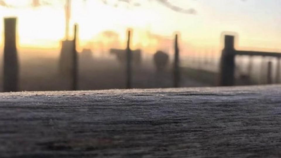 Invierno: Vuelven las heladas, pero 'lo más crudo ya pasó', dijo el Meteorólogo Mario Bidegain —  Clima — Dinámica Rural | El Espectador 810