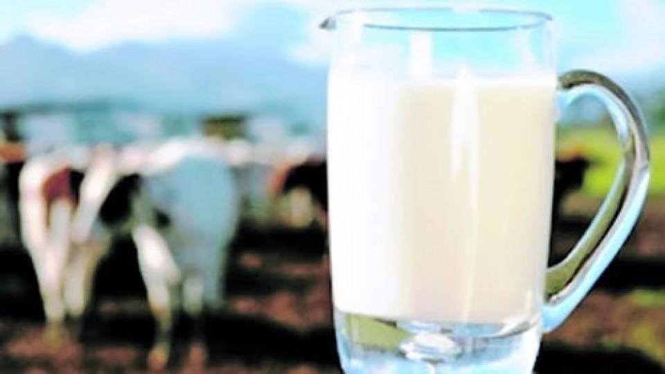 Exportaciones lácteas reportaron 343 millones dólares en lo que va del año —  Economía — Dinámica Rural | El Espectador 810