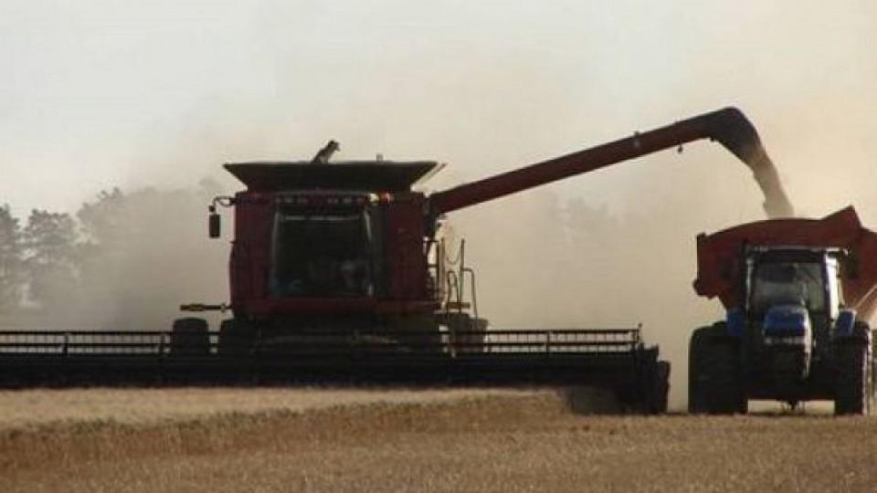 Zafra 20/21: CUSA, con leve corrección de precios sugeridos —  Agricultura — Dinámica Rural | El Espectador 810