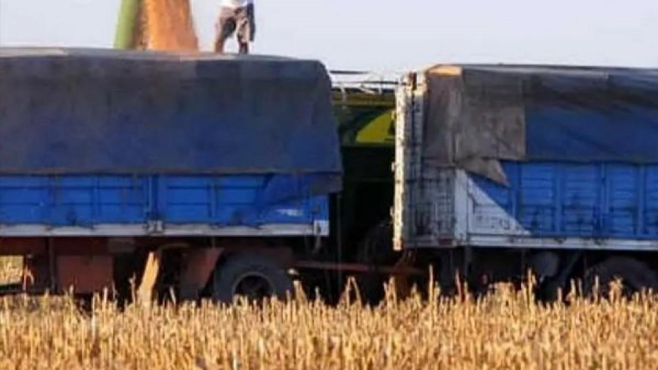 Por costo de hisopado, el productor lechero pagaba USD 0,29 y ahora, según decreto del PE, el costo es 2.90 dólares la tonelada —  Economía — Dinámica Rural | El Espectador 810