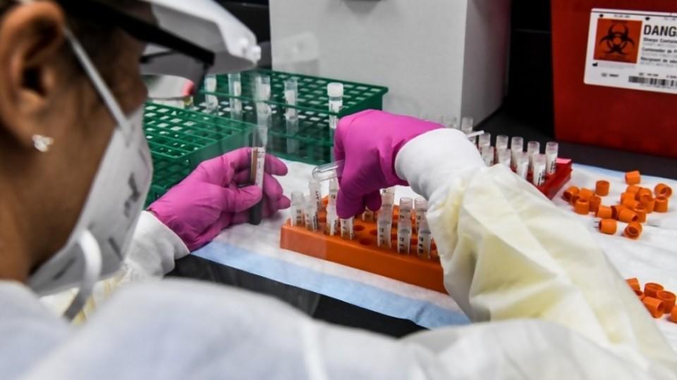 Darwin, las condiciones del chimichurri y las vacunas contra el COVID-19 —  NTN Concentrado — No Toquen Nada | El Espectador 810