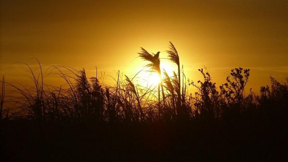 M. Bidegain: ''Esta semana no se esperan lluvias importantes'' —  Clima — Dinámica Rural | El Espectador 810