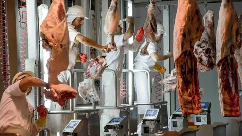 FOICA e industria ''se acercan'' para un acuerdo —  gremiales — Dinámica Rural | El Espectador 810