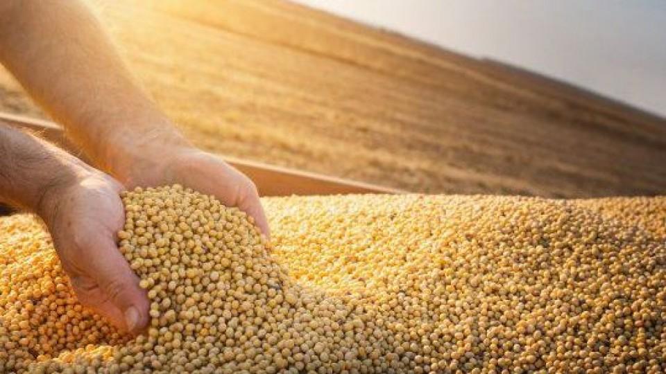 Chicago: ''La soja alcanza precios similares a 2014'' —  Agricultura — Dinámica Rural | El Espectador 810