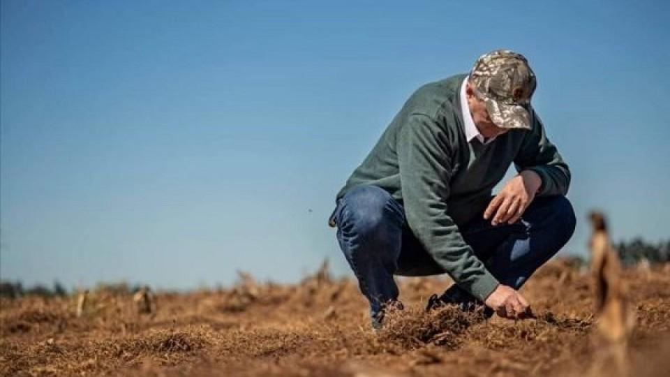 Planificar, investigar y adaptarse a los cambios, son clave para ADP —  Agricultura — Dinámica Rural | El Espectador 810