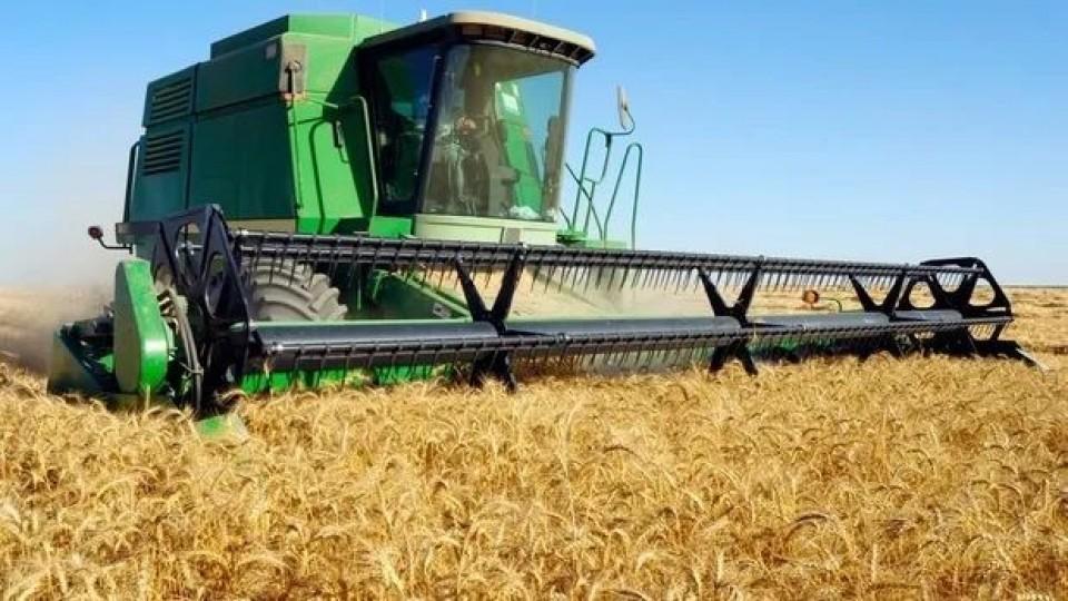 Zafra récord para trigo, cebada y canola —  Agricultura — Dinámica Rural | El Espectador 810