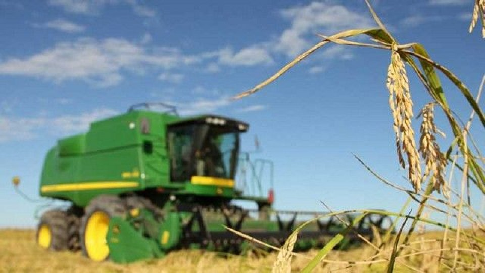 Para ACA ''es indispensable mejorar la competitividad'' —  Agricultura — Dinámica Rural | El Espectador 810