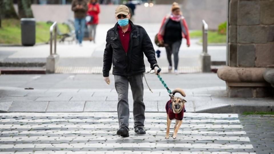Las intervenciones artísticas de la IM y un decreto que exige que los perros sean conducidos con correa y collar —  NTN Concentrado — No Toquen Nada | El Espectador 810