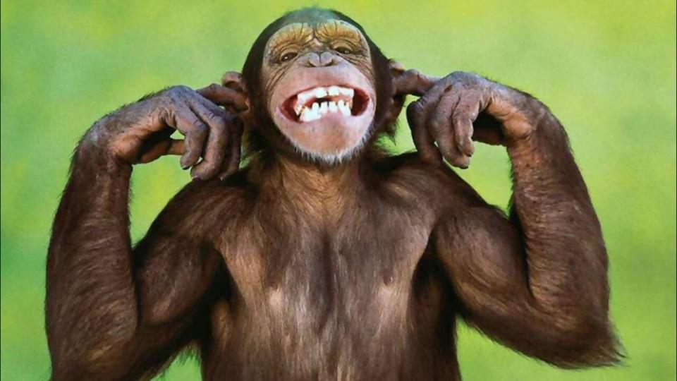 La vacuna y el coronel —  De qué te reís: Diego Bello — Más Temprano Que Tarde   El Espectador 810