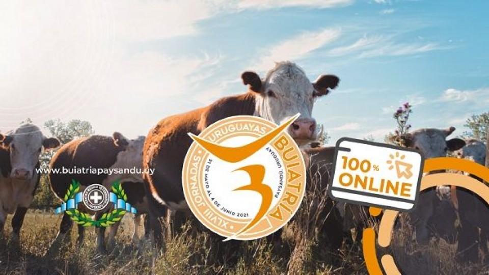Las jornadas de Buiatría serán 100% online —  Ganadería — Dinámica Rural   El Espectador 810